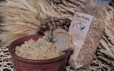 Azienda Agricola Il Poggio di Teo Manciano (13)